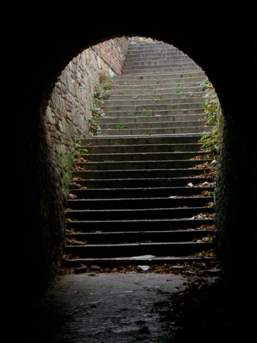 a flight of steps leading through a tunnel, the gate of belgrade castle