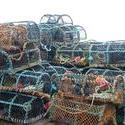 51   crab pots