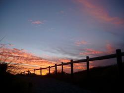 80-fence_sunset_silhouette_9368.JPG