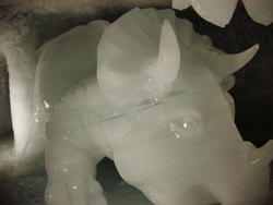 138-ice_caves_5713.jpg