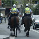 514   mounted police