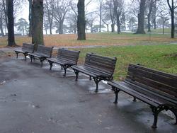 293-park_benches_1393.JPG