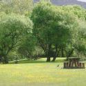119-park_land_picnic3174.jpg