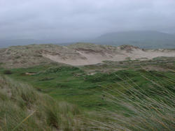 67-sand dune