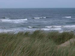 68-sand dune