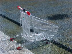 139-shopping_cart2941.JPG