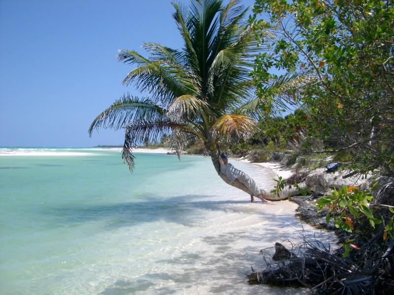 126-tropical_relaxation6082.JPG