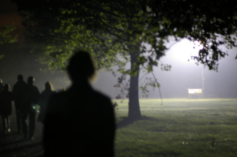 abstract and spooky nightime photography, a line of people walking through a park