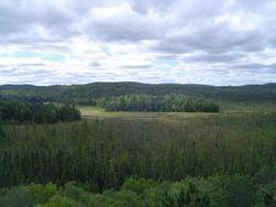 690-algonquin_provincial_park01017.jpg