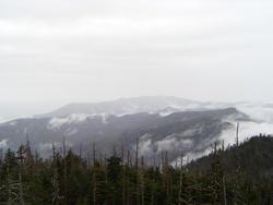 731-alpine_mountain365.jpg