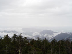 732-alpine_mountain367.jpg