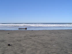 908-barren_beach_02162.JPG