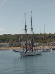 724-boats_in_the_harbor01313.jpg