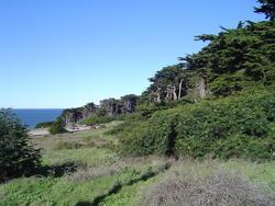 885-coastal_state_park_02147.JPG