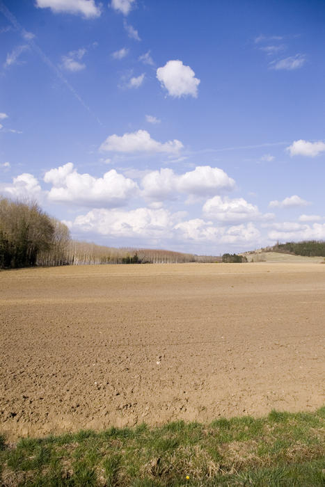 fram fields in rural france