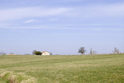 1159-french_fields_1746.jpg