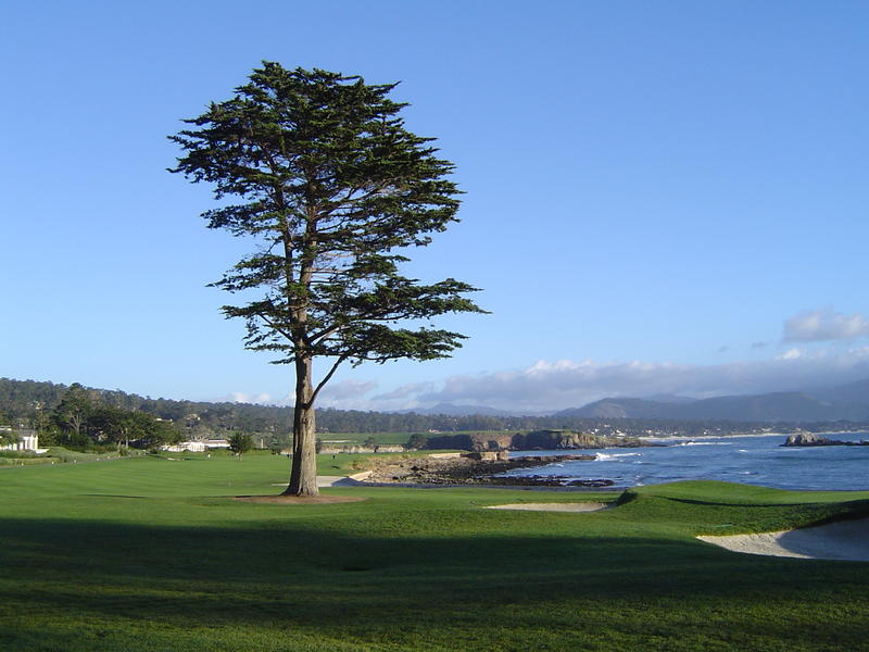 a picturesque golf course on the coast