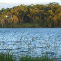 519-lake_tinaroo_queensland002.JPG