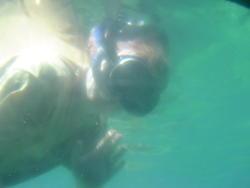 530-snorkelling_00628.jpg