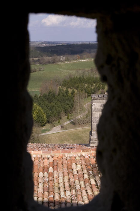 a view from the castle roof in a small french town