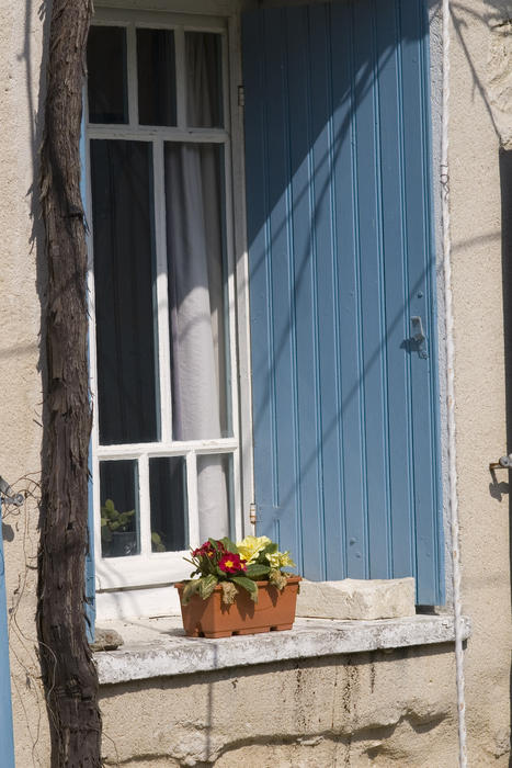 a shuttered window and a small window box with flowers