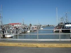 1432-Steveston_Dock.JPG