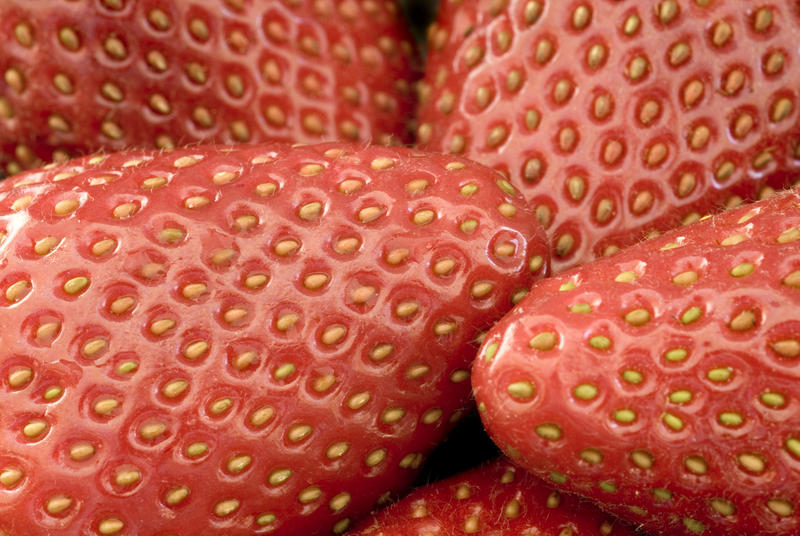 close up on some ripe red strawberries