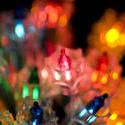 1856-christmas fairy lights