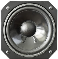 1975-speaker cone