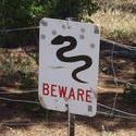 2904-snake warning
