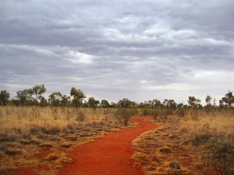 a bush walking track near uluru with a menacing looking sky contrasted against bright red orange soil