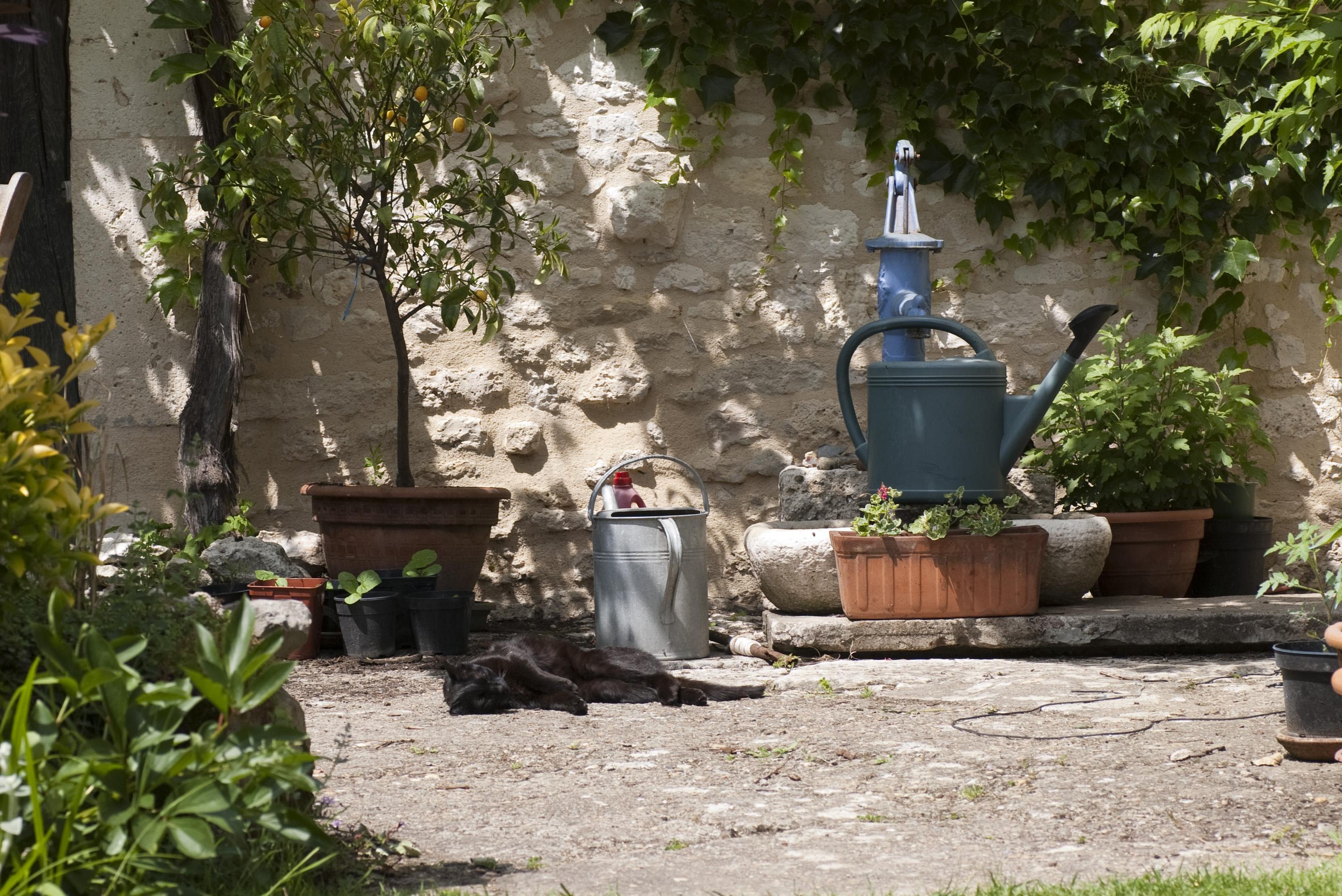 Landscape Design Pump Room Gardens Leamingtons Spa