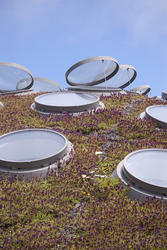 2880-Academy of Sciences Living Roof