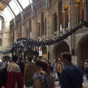 2297-natural history museum