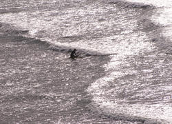 2731-surfer paddling out