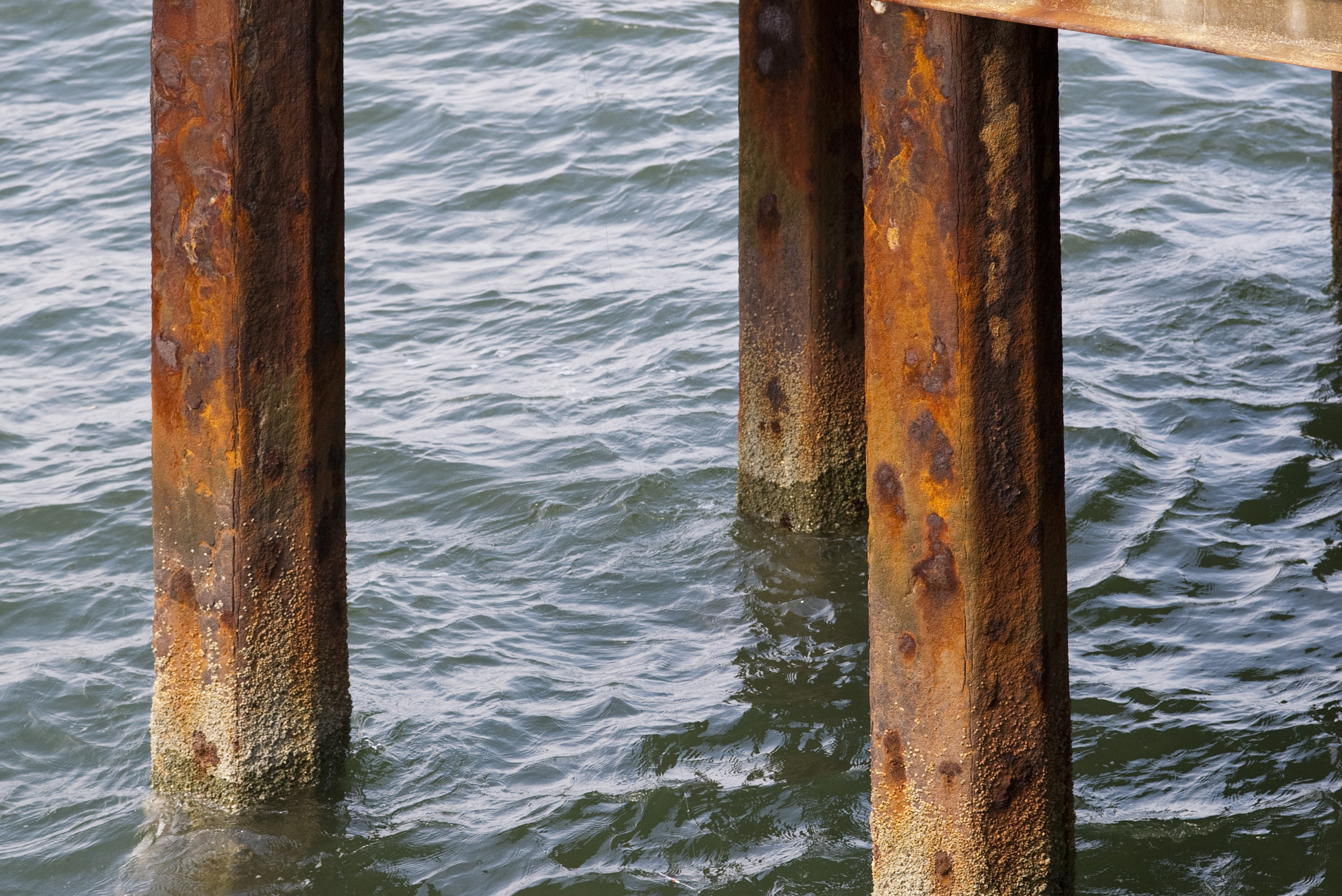 Free Stock Photo 2575 Rusted Pier Support Freeimageslive