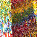 2756-colourful background