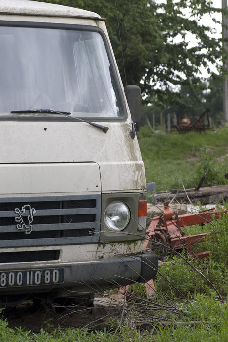 and old peugeot van left in an overgrown field