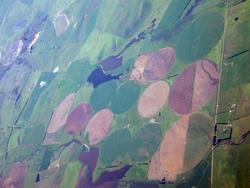 2923-tasmanian farming