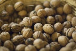 2799-wallnuts