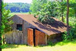 3785-Abandoned Shed 2