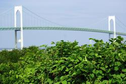 3758-The Bridge