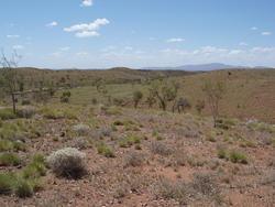 4095-NT landscape