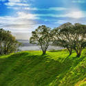 3968-auckland_morning_sun.jpg