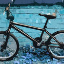 3294-bmx bike