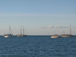 3401-various sailboats