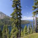 3019-Alpine landscape