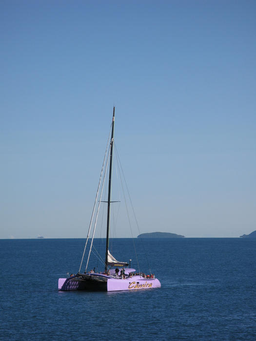 the big pink sailing catamaran: editorial use only