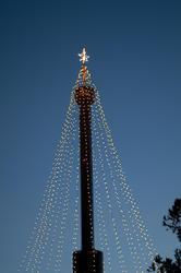3274-holiday lights