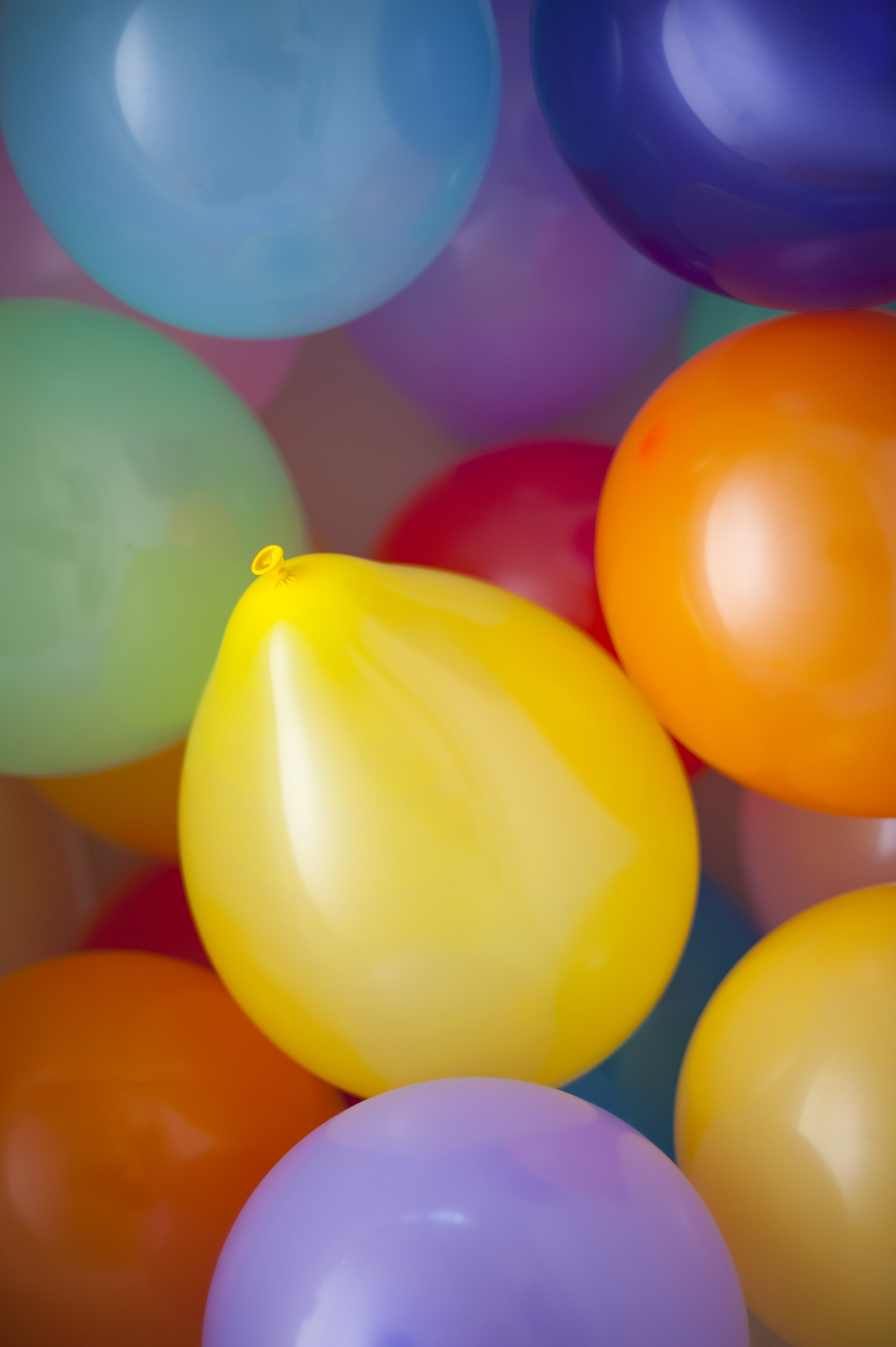 Free Stock Photo 3833 Colored Balloons Freeimageslive